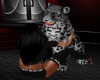 (SR) PET  LEOPARD