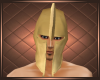 Warriors Helmet S2