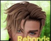 Lupin Brown Hair