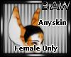 B! F Anyskin Wicked Ears