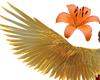 Fire Phoenix Wings