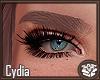 Cydia Blonde Eyebrows