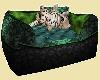 green cat bed w/kitten