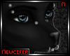 M! Silver Wolf Piercings