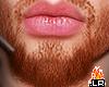 �L�Lil Ginger Beard