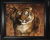 Tiger Framed Picture