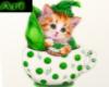 cat in a cup3