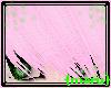 {maru}Cotton.Pink.Kira.