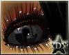 [xDx]Dark Religion Eyes