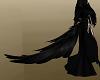 Black Raven Tail