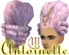 Antoinette- Taffeta Pink