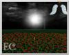 EC| Vamp Rose Field II