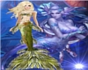 LSM Mermaid Orchid