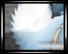 :V: SkiClou Tail2::