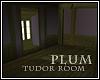 Plum Tudor Room