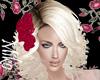 nissa platinum red rose