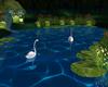 Swam Love Kiss Animated