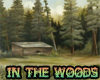 {NF} In the woods (DOC)