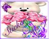 [S] Teddy 4