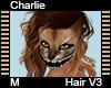 Charlie Hair M V3