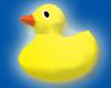 Rubber ducky float