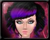 Gileria : Black/Purple