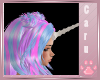 *C* Unicorn Horn Custom