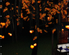 v| AHE;Tree Lights