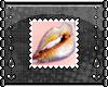 [S] Stamp
