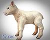 Animated Baby Lamb