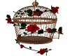 Red Roses Cage