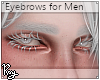 Silver Gray Eyebrows