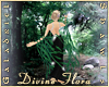 Divine Flora Shawl
