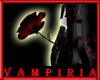 .V. Crimson Rose