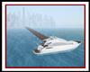DW Yacht