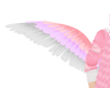 Pretty Kawaii Wings