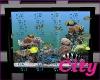 (C75) Fish Tank