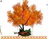 Romantic Fall Tree Swing