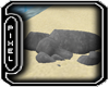 <Pp>Beach Rock 2 w/Poses