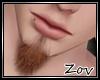 !Z! Beard Org