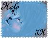{IK}Halo M Hair