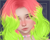 |A| Arcelia Watermelon