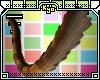 Ky* Calico Tail