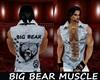 BIG BEAR MUSCLE