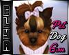 Glam Dog Pet