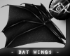 -LEXI- Bat Wings: Black