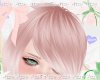 AT Custom Neko Ears