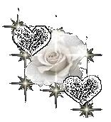 sticker_4235423_24242413