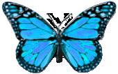 sticker_143950311_197