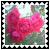 sticker_16790163_29469759